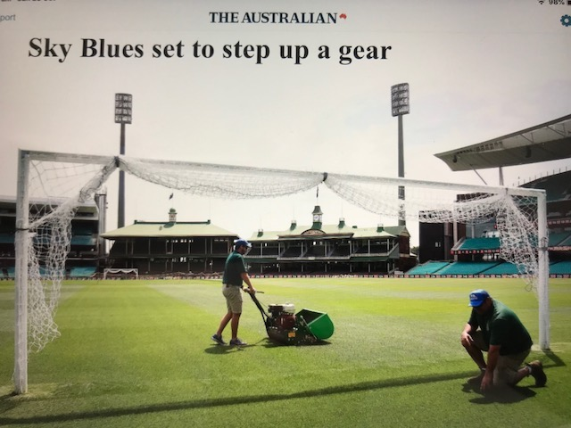Abel goals now at the SCG