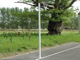 Socketed Netball Posts